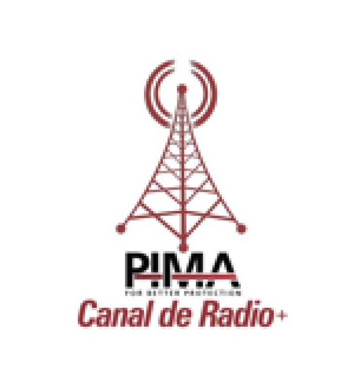 EXPANSION DE 1 CANAL DE RADIO CON FORMATO PAF, NPAF Y PID PARA CENTRAL SENTRY DE PIMA