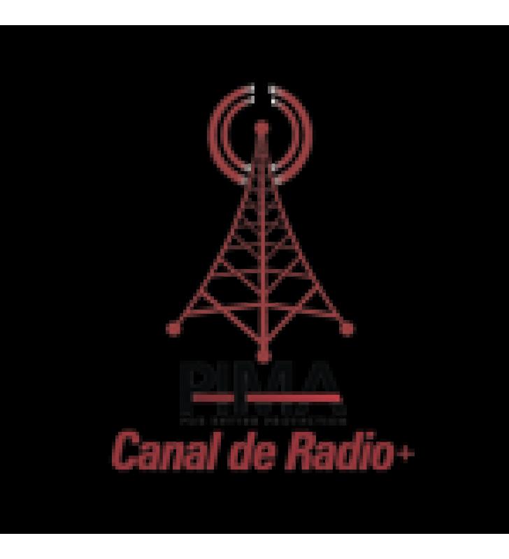 CANALES DE INICIO LINEA TELEFONICA Y RADIO(EXCLUSIVO SENTRY).