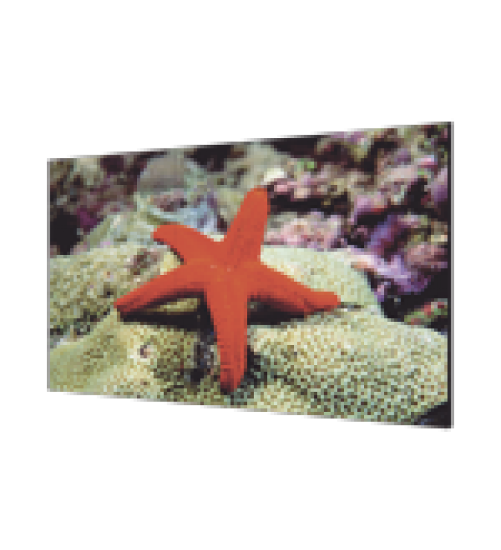 PANTALLA LCD 46 PARA TV WALL / ENTRADA HDMI - VGA - DVI - DP / MONITOR ROBUSTO